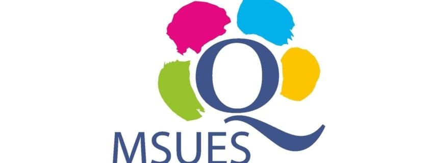 Znak jakości MSUES dla Infobrokerska.pl